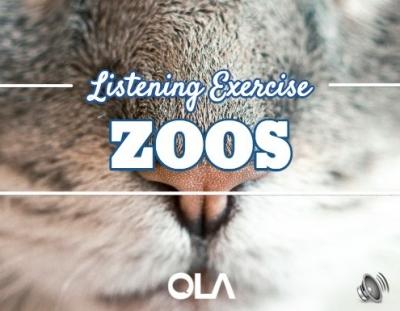 Ejercicio de listening sobre los zoos