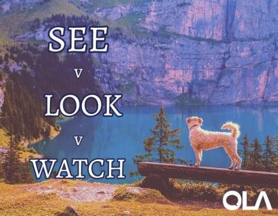 """La diferencia entre """"see"""", """"look"""" y """"watch"""""""